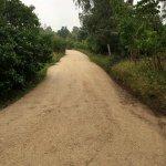 Grusveje til stier, fællesveje, sommerhusveje, jævn grusvej